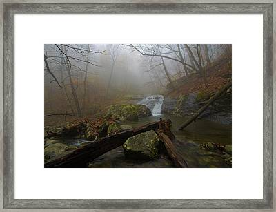 White Oak Canyon Safari Framed Print