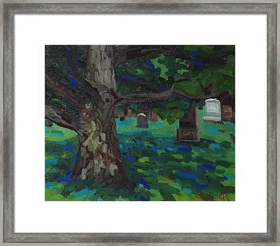 White Oak Shadows Framed Print by Phil Chadwick