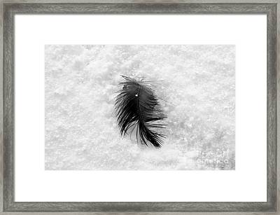 White On Black And White Framed Print