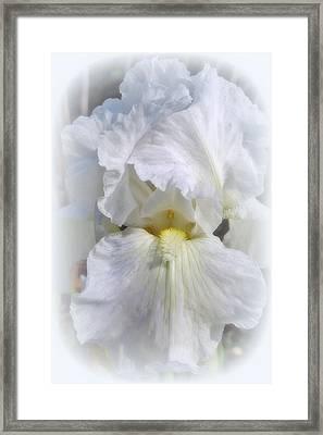 White On White Iris Framed Print