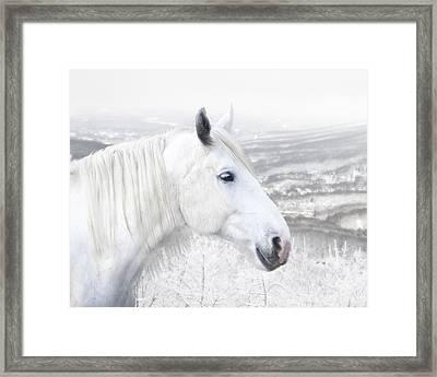 White On White Framed Print