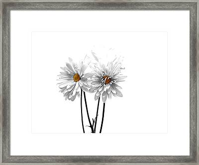White On White Framed Print by Regina Arnold