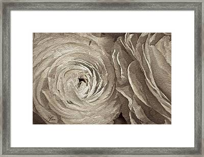 Framed Print featuring the painting White On White Rose by Joan Reese