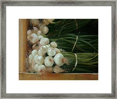 White Onions Framed Print by Michael Lynn Adams