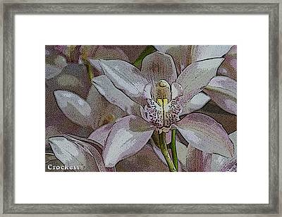 White Orchid Flower Framed Print