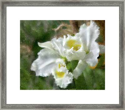 Framed Print featuring the photograph White Orchid by John Hix
