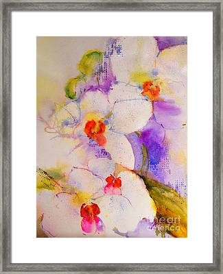 White Orchids Framed Print by Betty M M Wong
