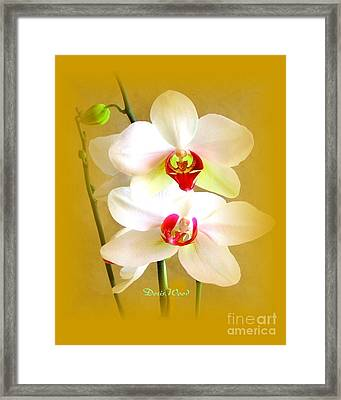 White Orchids Framed Print by Doris Wood