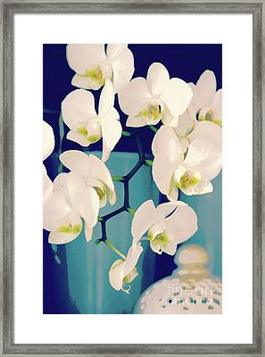 White Orchids In Turquoise Vase Framed Print by Carol Groenen