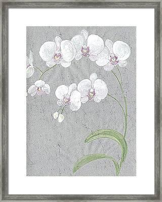 White Orchids On Sprigs  Framed Print by Marja Koskinen-Talavera