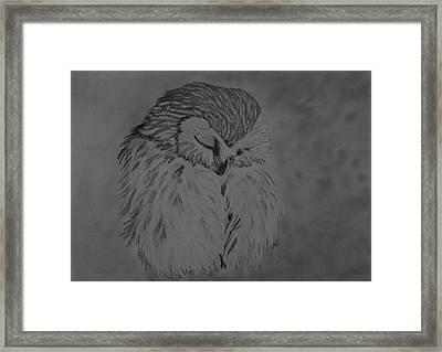 White Owl Framed Print by Maria Woithofer