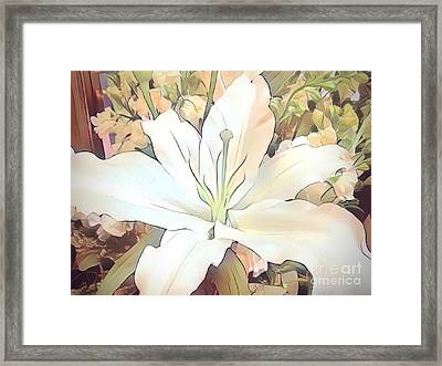 White Painted Lily Framed Print