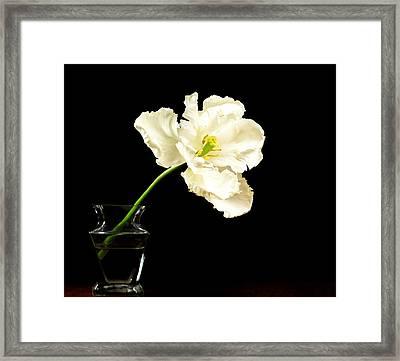 White Parrot Floral Framed Print