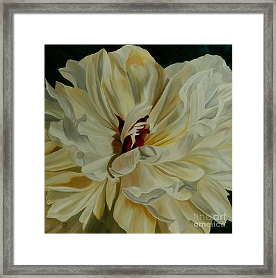 White Peony Framed Print by Julie Pflanzer
