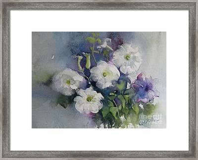 White Petunias Framed Print
