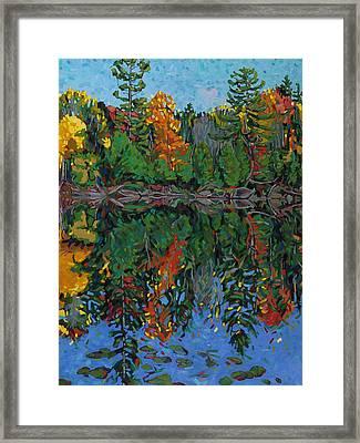 White Pine Reflections Framed Print