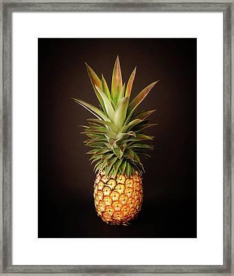 White Pineapple King Framed Print