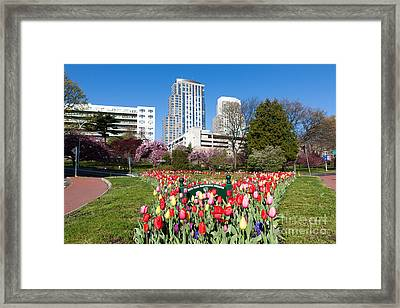 White Plains Beautification Foundation Garden Framed Print by Clarence Holmes