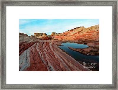 White Pocket Oasis Framed Print by Mike Dawson