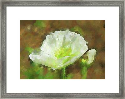 White Poppy 1 Impression  Framed Print