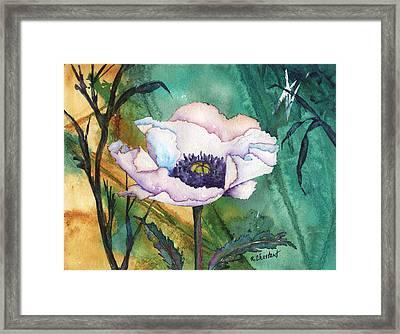 White Poppy On Teal Framed Print by Renee Chastant