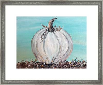 White Pumpkin Framed Print