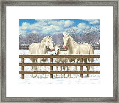 White Quarter Horses In Snow Framed Print by Crista Forest