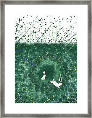 White Rabbits  Framed Print by Andrew Hitchen