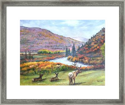 White River Framed Print by Darla Joy  Johnson