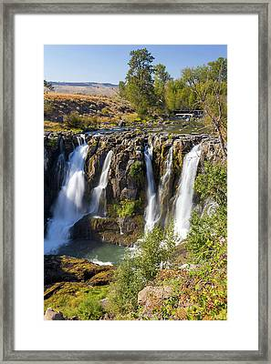 White River Falls In Tygh Valley Framed Print by David Gn