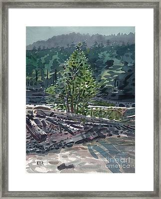 White River Sandbar Framed Print by Donald Maier