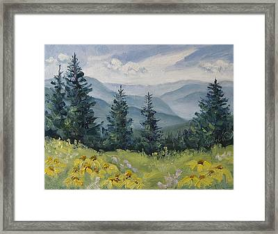 White River Valley Colorado Framed Print