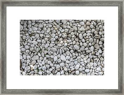 White Rocks Field Framed Print