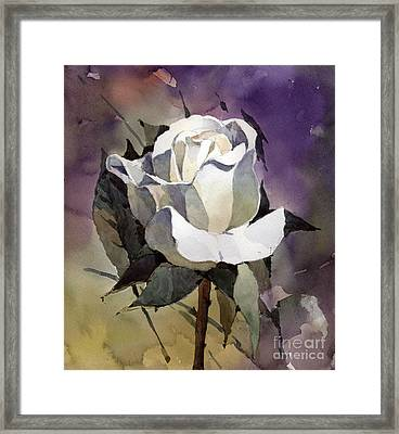 White Rose Framed Print by Natalia Eremeyeva Duarte