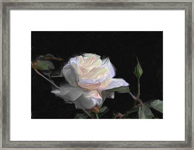 White Rose Painting Framed Print