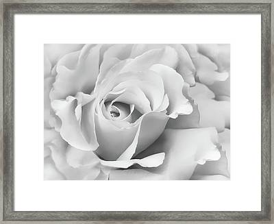 Framed Print featuring the photograph White Rose Ruffles Monochrome by Jennie Marie Schell
