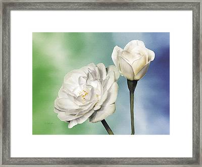 White Roses Framed Print by Jan Baughman