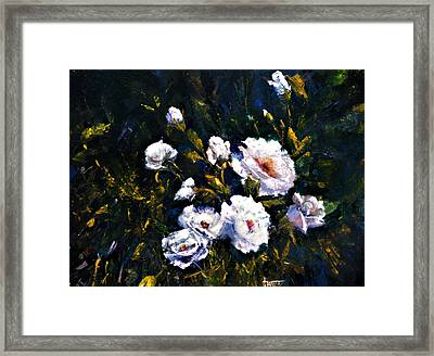White Roses Framed Print by Jimmie Trotter