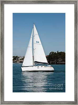 White Sails Framed Print by John Buxton