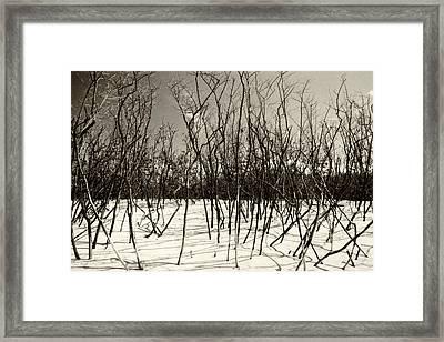 White Sand Framed Print