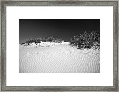 White Sands 5 Framed Print