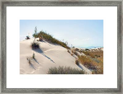 White Sands Icing Framed Print by John Kelly