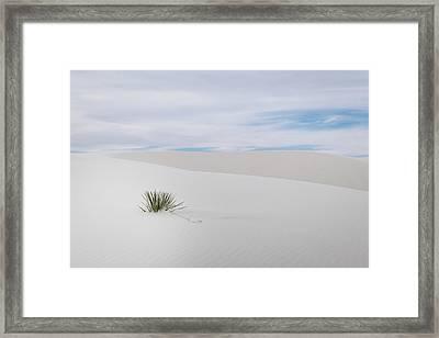 White Sands Framed Print by Michael Osborne