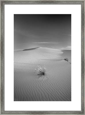 White Sands Framed Print by Peter Tellone