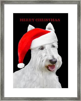 White Scottish Terrier Dog Christmas Card Framed Print by Jennie Marie Schell