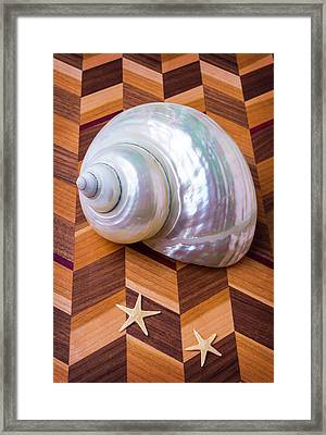 White Shell And Starfish Framed Print