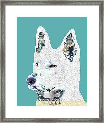 White Shepherd Framed Print by Claudia Schoen