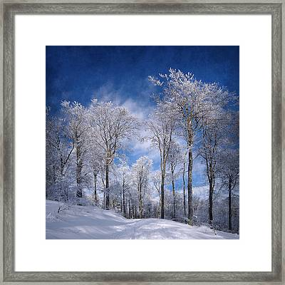 White Skin Framed Print