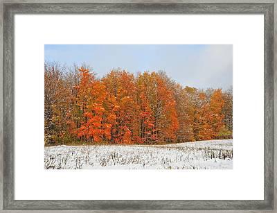 White Snow In Autumn Framed Print