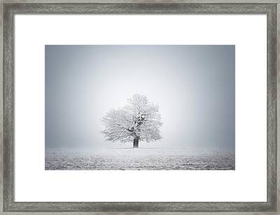 White Solitude And Light Framed Print by Janek Sedlar